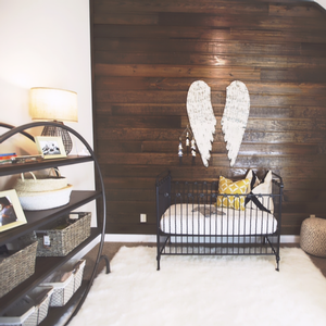 Rustic Adventure Nursery